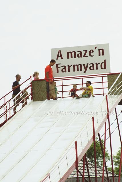 AmazeNFarm5