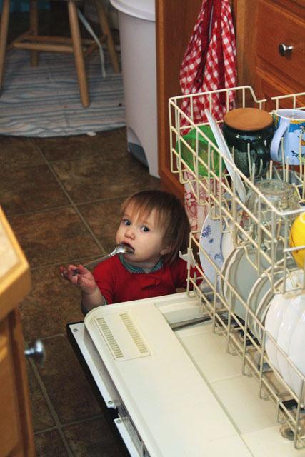 DishwasherHelp